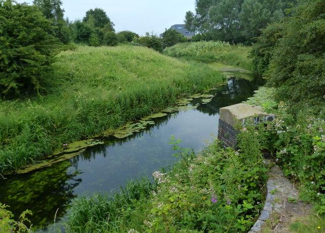 The River Nat at South Lynn