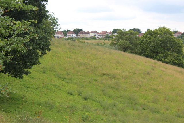 View from hillside meadow to High Cross Road