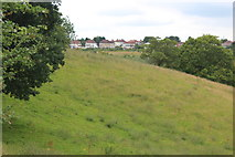 ST2888 : View from hillside meadow to High Cross Road by M J Roscoe