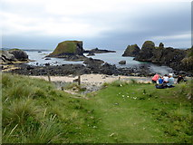 D0345 : Small beach, Ballintoy Demesne by Kenneth  Allen