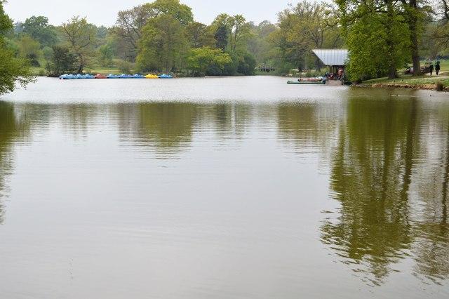 Lake, Dunorlan Park by N Chadwick