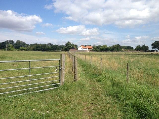 Beside Beech Farm
