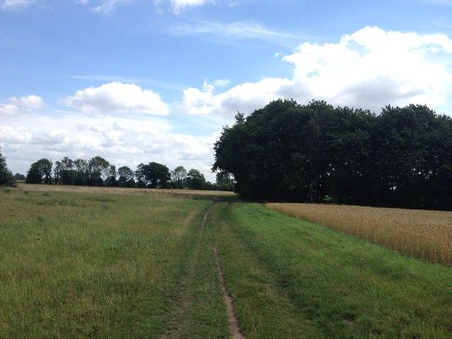 Bridleway to Rectory Farm