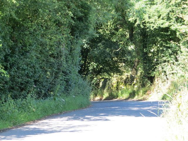Moor Lane descending to Elsack