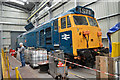 SO8375 : Class 50 under repair by Philip Pankhurst