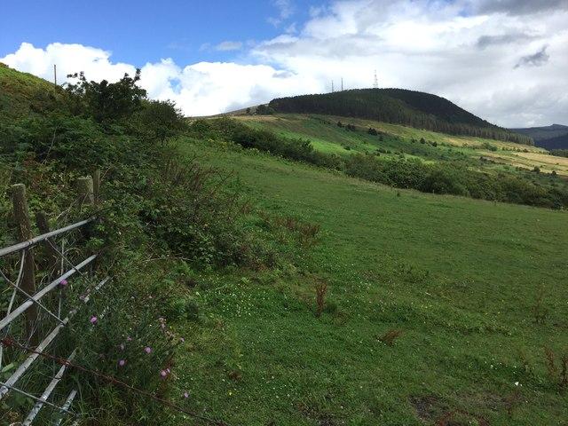 View towards Foel Fynyddau