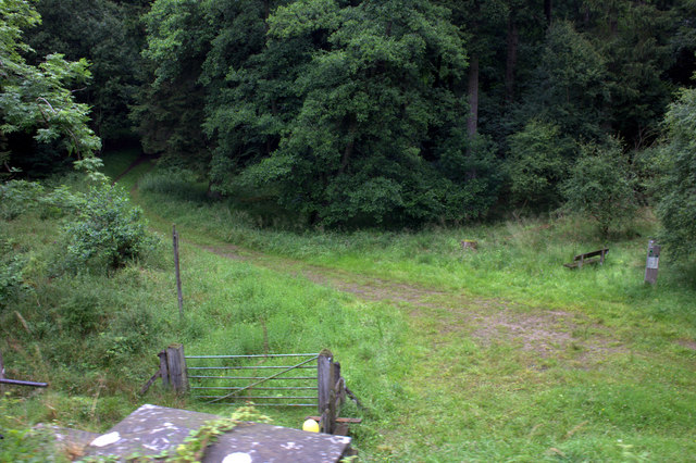 Path from Newton Dale Halt into Beulah wood