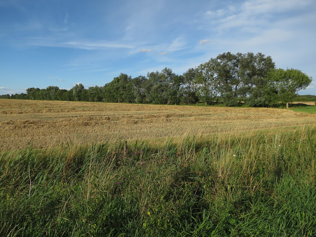 Recently harvested field by Cross Drove