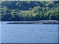 NN0570 : Salmon Farm in Loch Linnhe by David Dixon