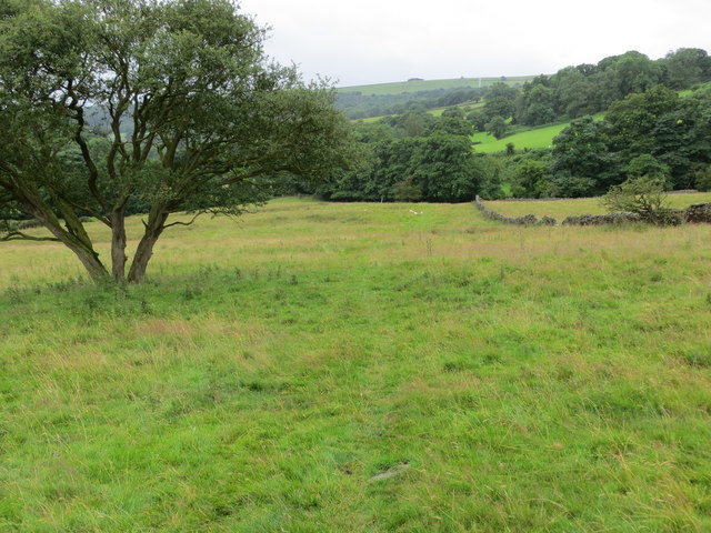 Field path used by the Six Dales Trail