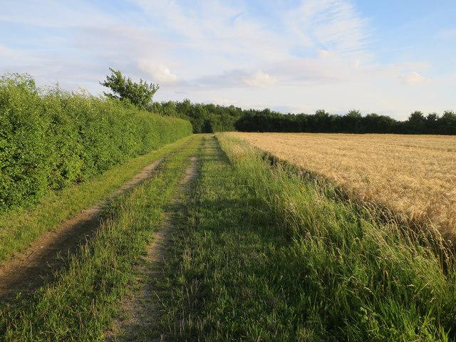 Permissive footpath
