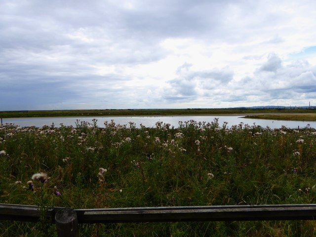 Goldcliff Lagoons