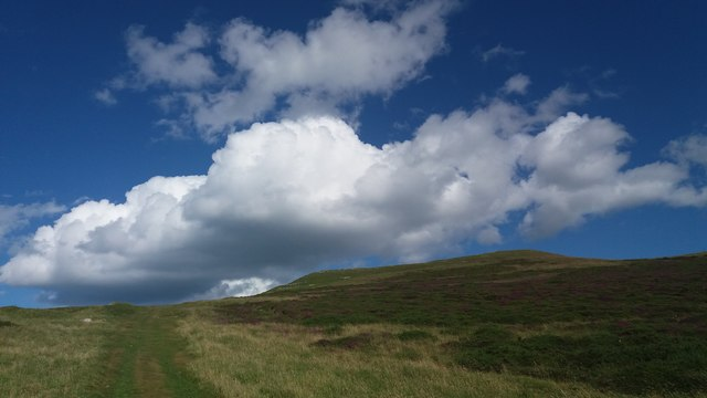 Pathways near the top of Great Orme