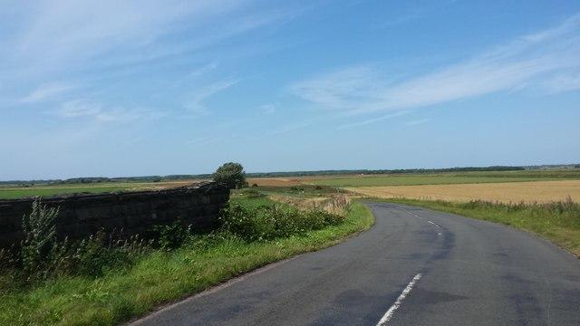 Old Moss Lane