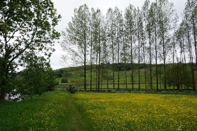 The Ribble Way towards Cragg House Farm