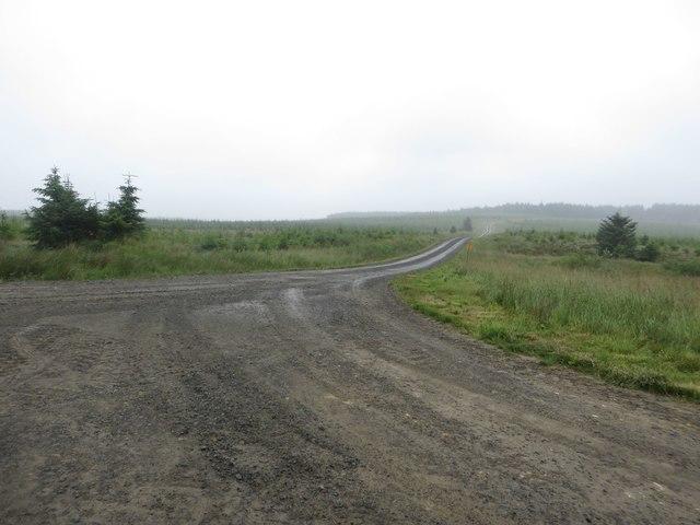 Track junction near Gowany Knowe