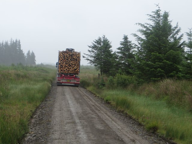 Timber lorry in Wark Forest