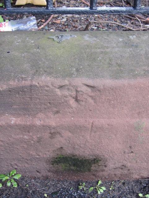 Pivot bench mark in Everton Road outside Grant Gardens