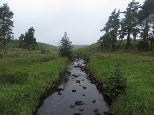 The Chirdon Burn south of Allerybank