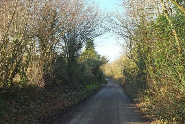 Lane past Ferndown