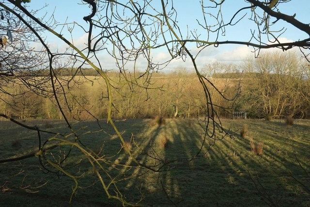 Farmland near Ferndown