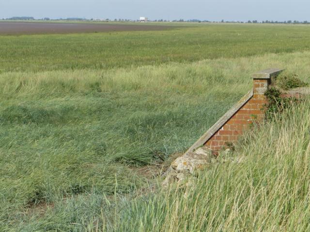 Marshes near Weeton Clough
