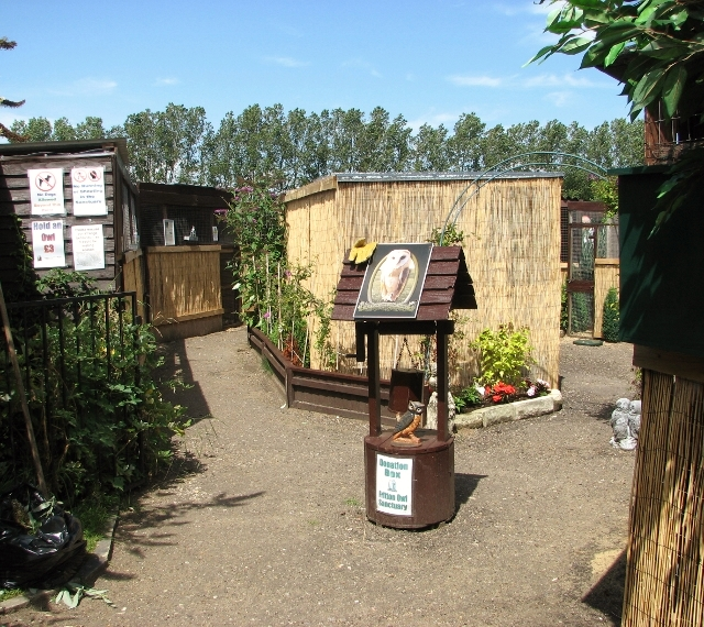 The Fritton Owl Sanctuary