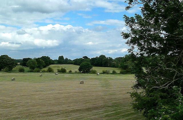 Tiffey Valley Farmland
