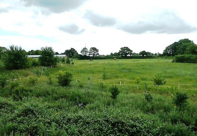 Garvestone Rural View