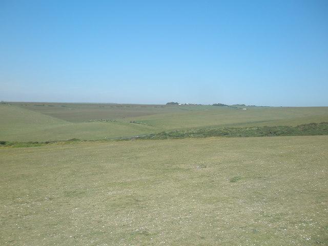 Pasture to the northeast of Hodcombe Farm