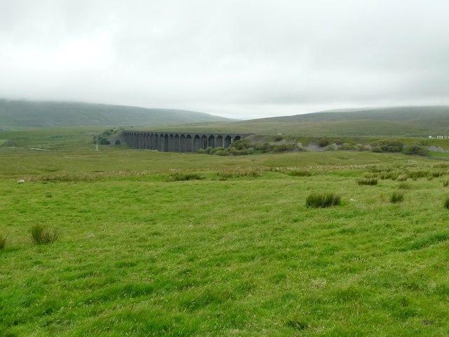 Gauber Little Pasture