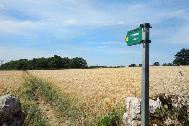 The Wychwood Way at Bolton's Lane