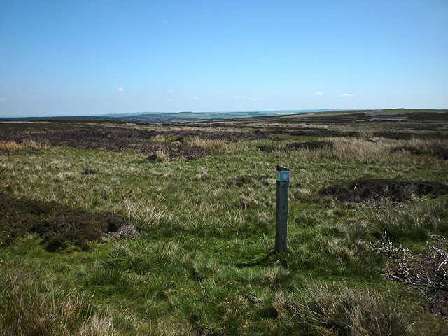 Footpath marker post, Blanchland Moor