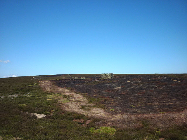 Line of shooting butts, Blanchland Moor