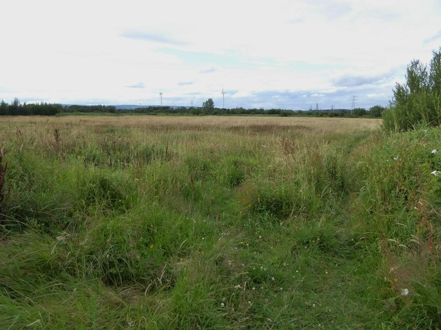 Great Traston Meadows Nature Reserve