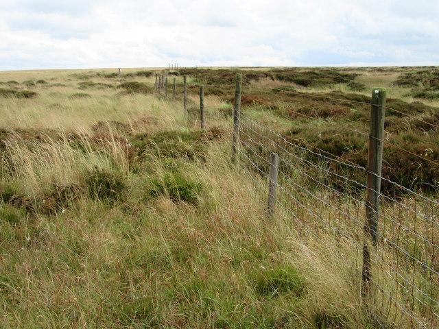 Fence on Buckstones Moss