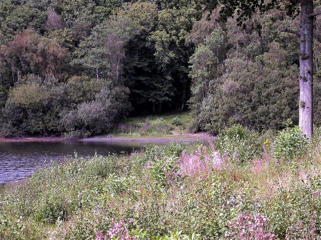 Part of the eastern edge of Powdermill Reservoir