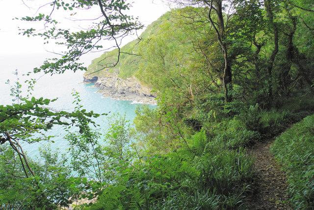 Coast path above Lee Bay