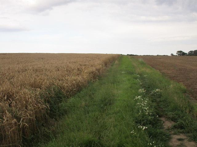 Bridleway to Skirlaugh