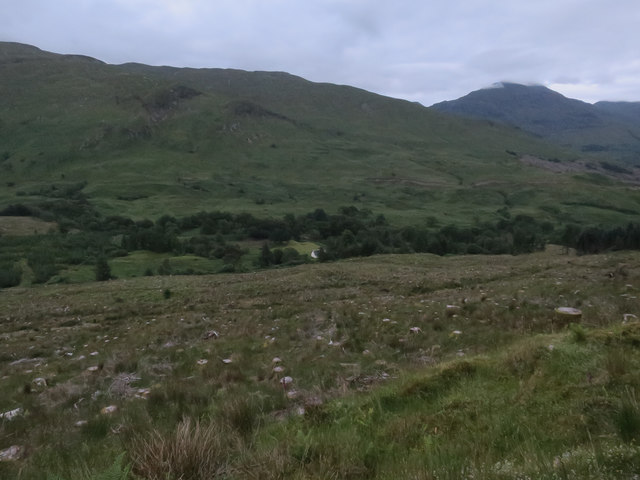 Clearfell in Glen Creran