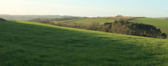 Hawkridge Brook valley