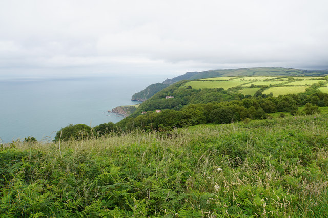Scrubland above Woody Bay