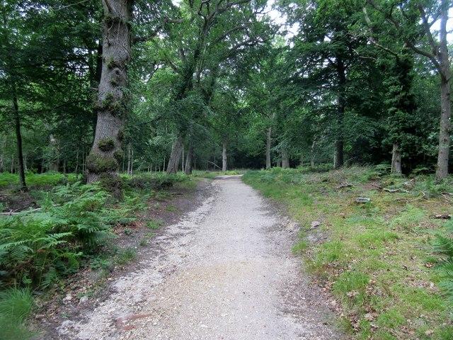 Bridleway to Church Lane