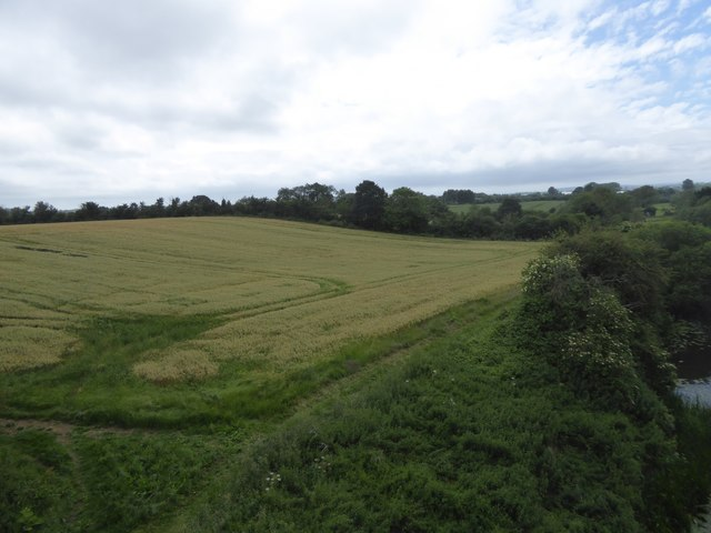 Field sloping to River Avon