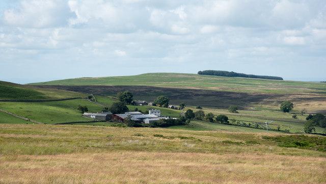 Grassland of Kid Moor