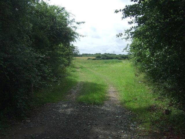 Farm track, Warndon