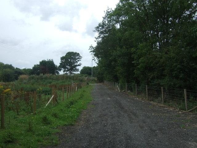 Farm track off an unnamed lane