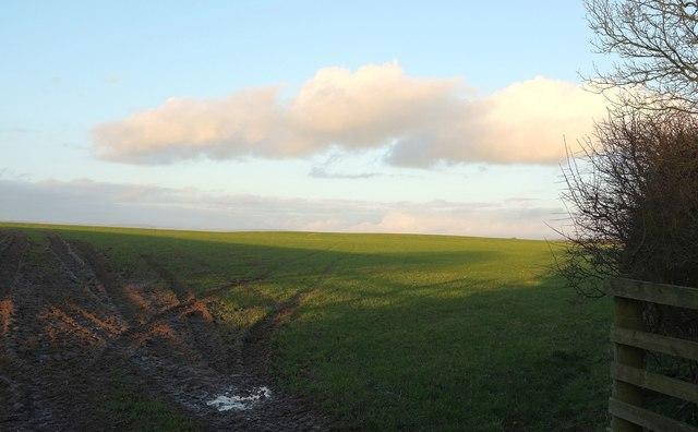 Grass field east of Eastacott Cross