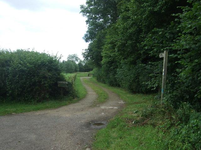 Track (footpath) off Hadzor Lane