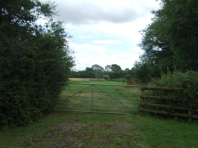 Field entrance off Hadzor Lane